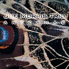Joe Morris Trio Antennae