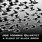 Joe Morris Quartet, A Cloud Of Black Birds