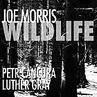 JOE MORRIS Wildlife