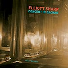 ELLIOTT SHARP, Concert in Dachau