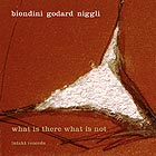 BIONDINI / GODARD / NIGGLI What Is There What Is Not