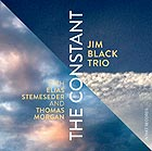JIM BLACK TRIO The Constant