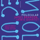 JAMES BRANDON LEWIS QUARTET Molecular