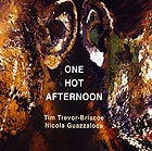 TIM TREVOR-BRISCOE / NICOLA GUAZZALOCA One Hot Afternoon