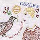 Curlew Meet The Curlews