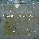 LED BIB Sensible Shoes