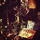 HAPPY FAMILY Minimal Gods
