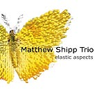 MATTHEW SHIPP TRIO Elastic Aspects