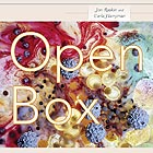 JON RASKIN / CARLA HARRYMAN Open Box