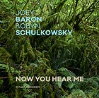 JOEY BARON / ROBYN SCHULKOWSKY, Now You Hear Me